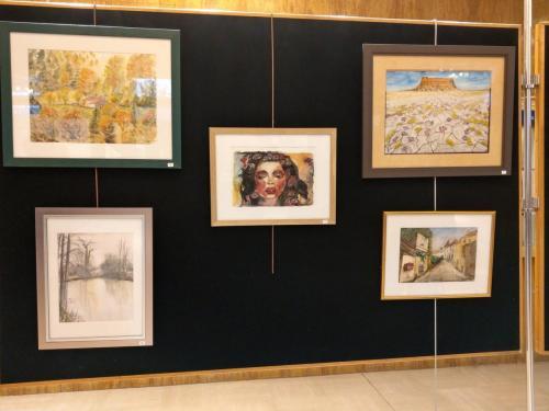 Exposition mairie Lyon 9